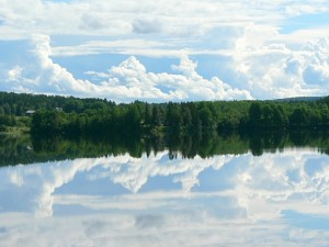 forest-sky-mirror-lake